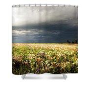 Wildflower Panorama 2008 Shower Curtain