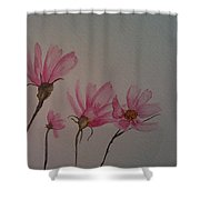 Wildflower Pink Shower Curtain by Ginny Youngblood