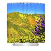 Wildflower Power Shower Curtain