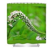 Wildflower Slide Shower Curtain