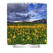 Wildflower Storm Shower Curtain