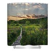Wildflower Sunset 2016 Square Shower Curtain