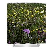 Wildflower Surprise Shower Curtain