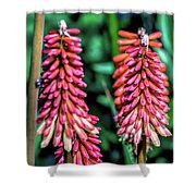 Wildflower  V8 Shower Curtain