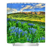 Wildflower Wonder Shower Curtain