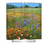 Wildflower Wonderland 4 Shower Curtain