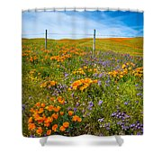 Wildflower Wonders Of The High Desert Shower Curtain