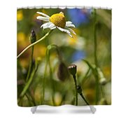 Wildflowers 1 Shower Curtain