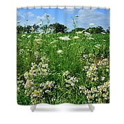 Wildflowers Along Country Road In Mchenry County Shower Curtain