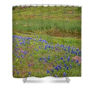 Wildflowers Along The Creek Shower Curtain