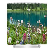 Wildflowers Along The Lake Shower Curtain