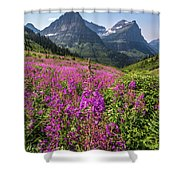 Wildflowers And A Glacier Shower Curtain