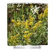 Wildflowers And Bee Shower Curtain