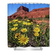 Wildflowers And Butte Shower Curtain