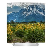 Wildflowers And Mount Moran Shower Curtain