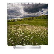 Wildflowers And Storm Clouds Shower Curtain