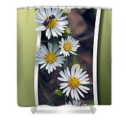 Wildflowers And Visitor Shower Curtain