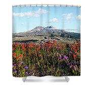 Wildflowers At Mount St Helens Shower Curtain