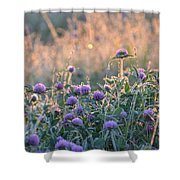Wildflowers At Sunrise Shower Curtain