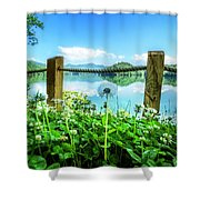 Wildflowers At The Lake In Spring Shower Curtain