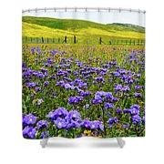Wildflowers Carrizo Plain Shower Curtain