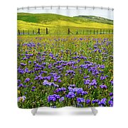 Wildflowers Carrizo Plain National Monument Shower Curtain