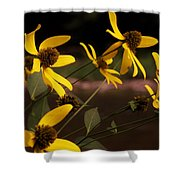 Wildflowers Creekside Shower Curtain