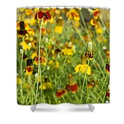 Wildflowers Four Shower Curtain