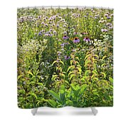 Wildflowers Glow In Setting Sun Light Shower Curtain