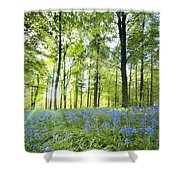 Wildflowers In A Forest Of Trees Shower Curtain