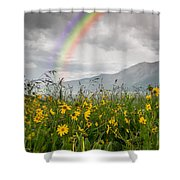 Wildflowers In Crested Butte Shower Curtain