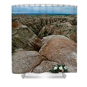Wildflowers In The Badlands Shower Curtain