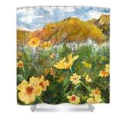 Wildflowers In The Desert Shower Curtain