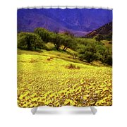 Wildflowers In The San Emigdio Mountains Shower Curtain