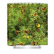 Wildflowers Nine Shower Curtain