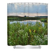 Wildflowers Of Hackmatack National Wildlife Refuge Shower Curtain