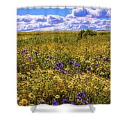 Wildflowers Of The Carrizo Plain Superbloom 2017 Shower Curtain