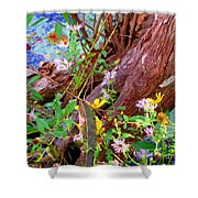 Wildflowers On A Cypress Knee Shower Curtain