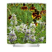Wildflowers Seven Shower Curtain