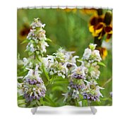 Wildflowers Three Shower Curtain