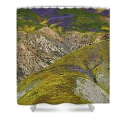 Wildflowers Up The Hills Of Temblor Range At Carrizo Plain National Monument Shower Curtain