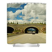 Wildlife Crossing Shower Curtain