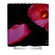 Wildly Pink On Black Flower Shower Curtain
