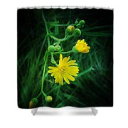 Wildly Yellow Shower Curtain