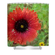Wildflower Water Drops Shower Curtain