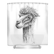 Will Shower Curtain