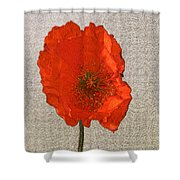 Will The Poppy In The Back Please Stand Up Shower Curtain