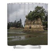 Willapa Bay Shoreline Shower Curtain