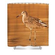 Willet Shower Curtain