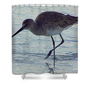 Willet In The Surf Shower Curtain